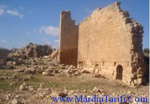 Mardin Dara Oğuz Köyü 2