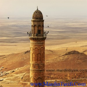Mardin Ulu Cami (Cami-i Kebir) resimleri 9